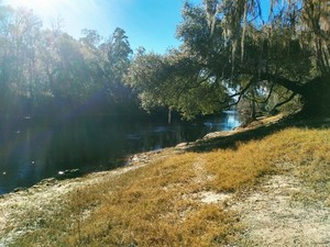 [Downstream, Gibson Park]