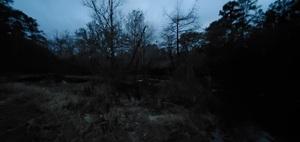 [Downstream]