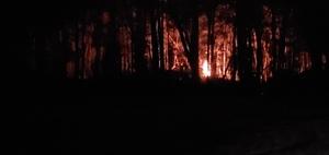 [Bonfire]