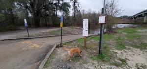 [Dog, signs, bridge, State Line Boat Ramp]
