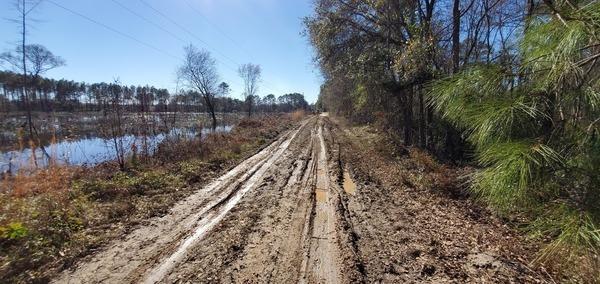 [Muddy ahead; park the Prius]