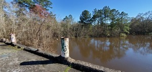 [South full downstream in Brooks County]