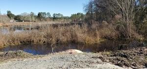 [Upstream culvert Tiger Creek]
