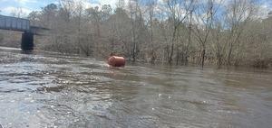 [Flow buoy, 12:41:45, 30.7935818, -83.4535888]