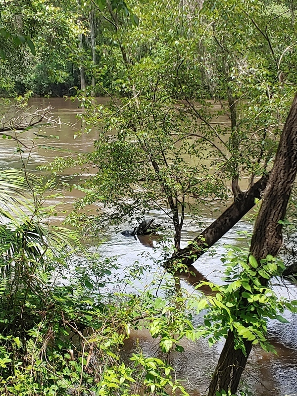[Seven-foot Withlacoochee River]