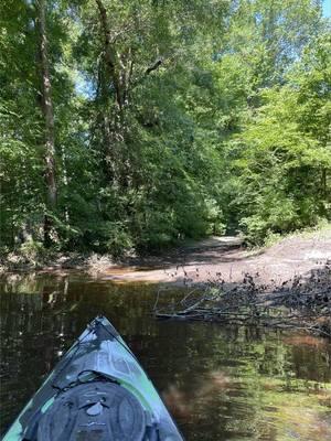 [Kayak, river, access]
