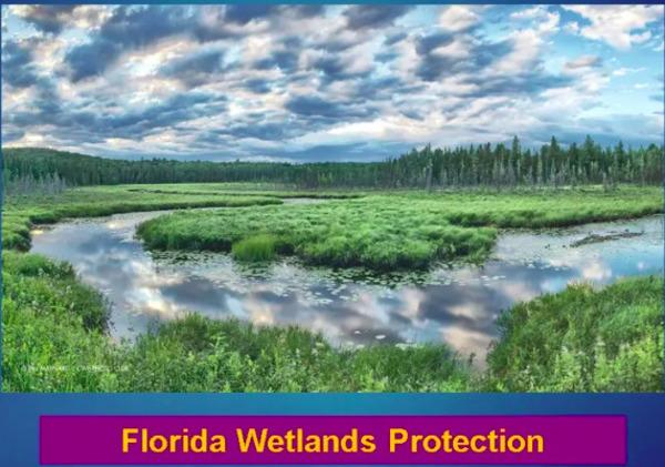 [Florida Wetlands Protection]