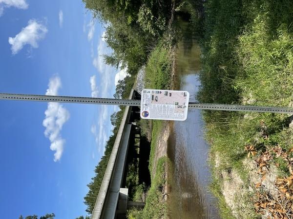 [Youngs Mill Creek Landing @ GA 37, Withlacoochee River, Cook County, GA]