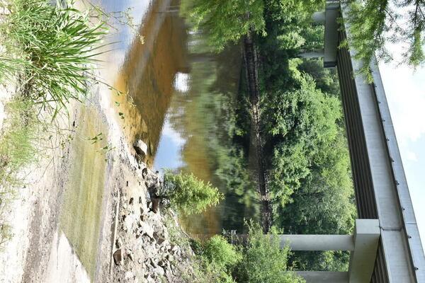 [Horn Bridge, State Line Boat Ramp 201-05-27]