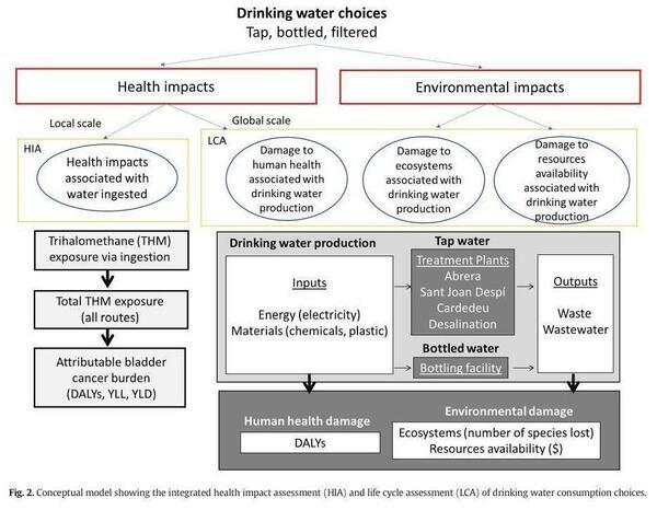 [Model: Drinking Water Choices]