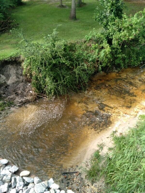 [Upstream from bridge]