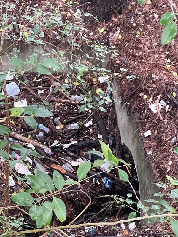 [Yet more trash and culvert]