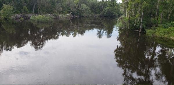 [Lakeland Boat Ramp, Alapaha River 2021-07-28]