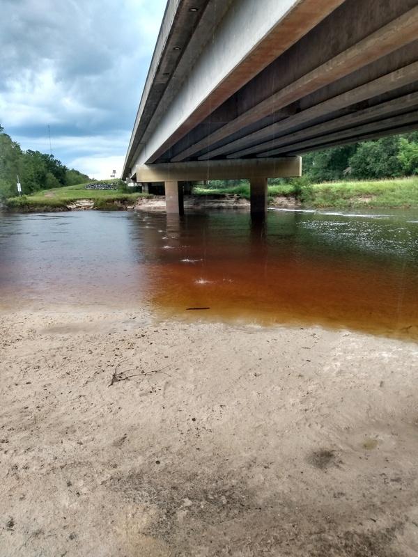 [Willacoochee Landing, Alapaha River @ GA 135 2021-09-01]