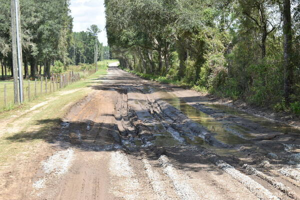 [Mud Trap, Knights Ferry Road, Withlacoochee River 2021-09-02]