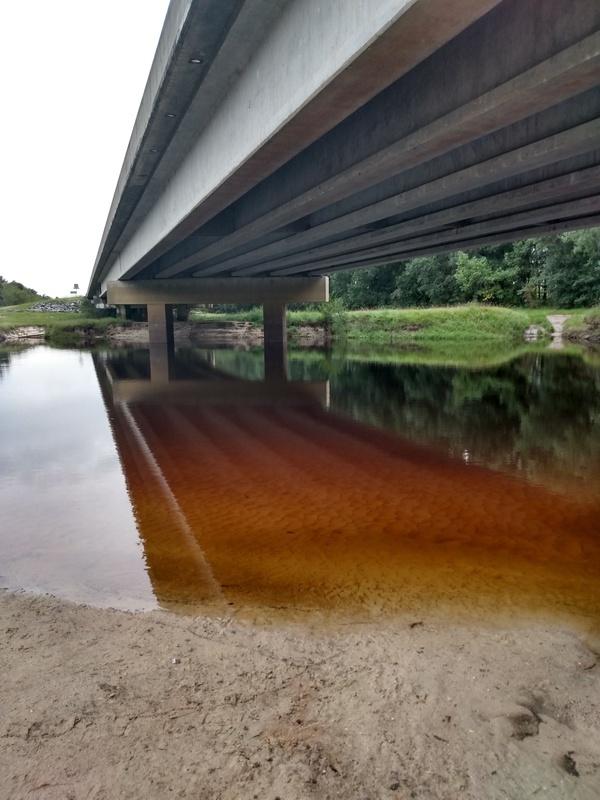 [Willacoochee Landing, Alapaha River @ GA 135 2021-09-09]