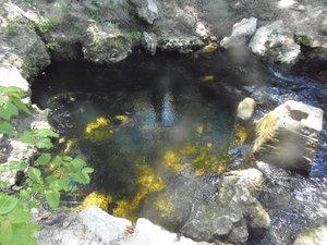 [Spring pool, 15:08:59]