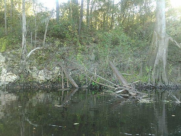 Fallen girders of Belleville Bridge, Hamilton County side