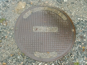Lowndes County, Georgia Sanitary 30.8942928, -83.3198395