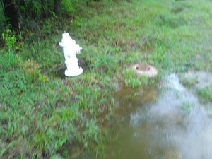 Fire hydrant and water valve 30.8926258, -83.3194580