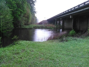 Withlacoochee River is high, 9.8 feet, still well below 14 foot flood 30.8943024, -83.3198547