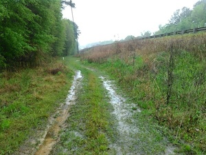 Wet, but no big potholes 30.8943024, -83.3198547